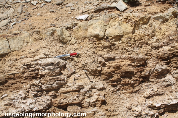 White Mountain, Wyoming; Sand Butte Bed sandstone; Green River formation Laney member