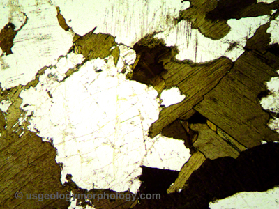 Morton gneiss thin section-PPL-plane polarized light