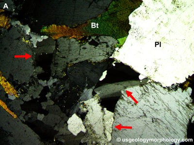 Quartz undulose extinction in Morton gneiss- thin section-XPL-cross-polarized light